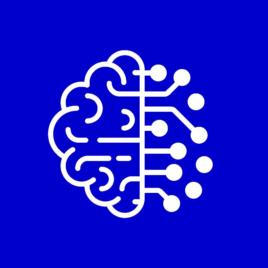 סדנאות המוח הדינאמי ותוכניות ליווי